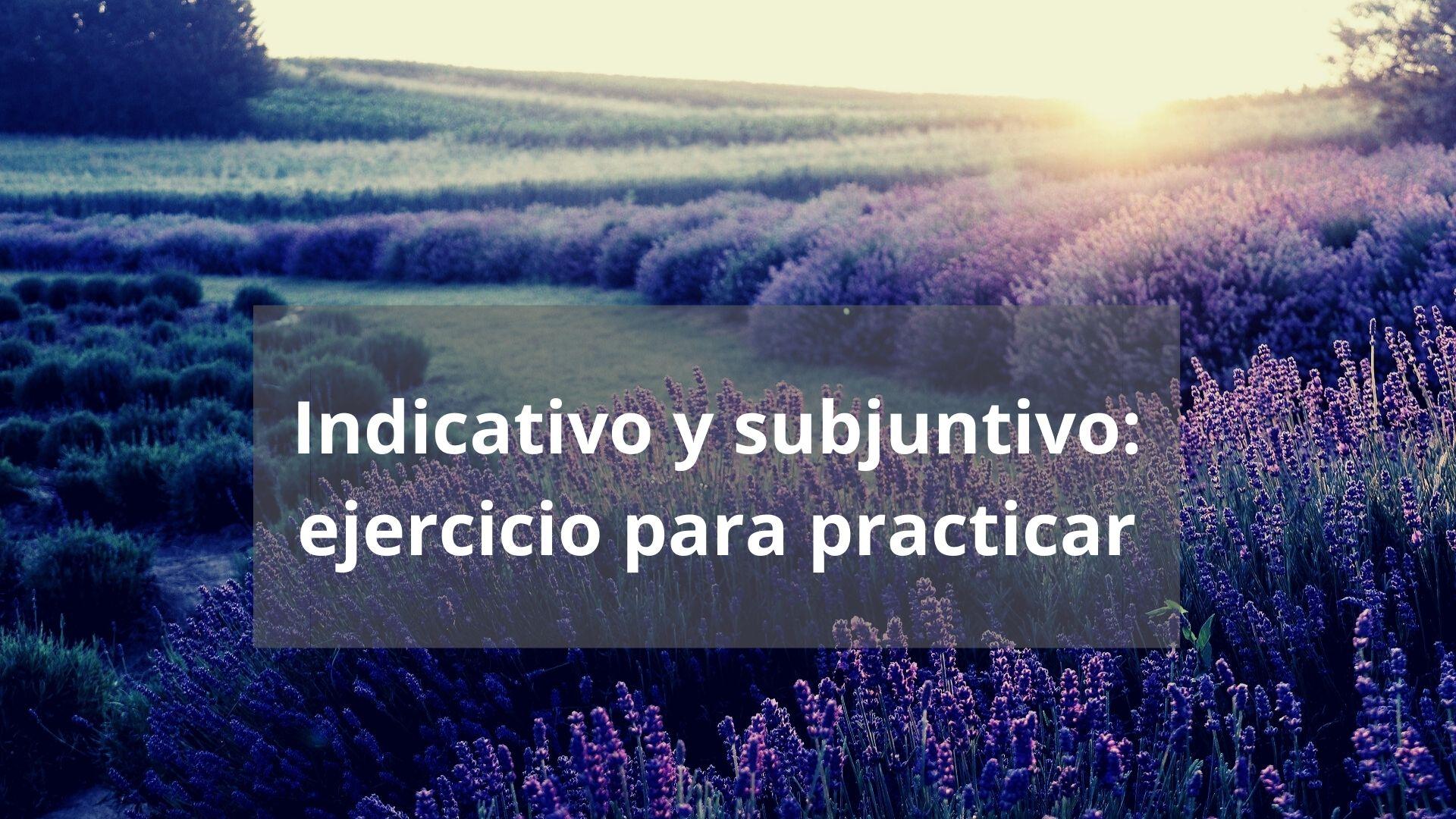 Indicativo y subjuntivo: ejercicio para practicar