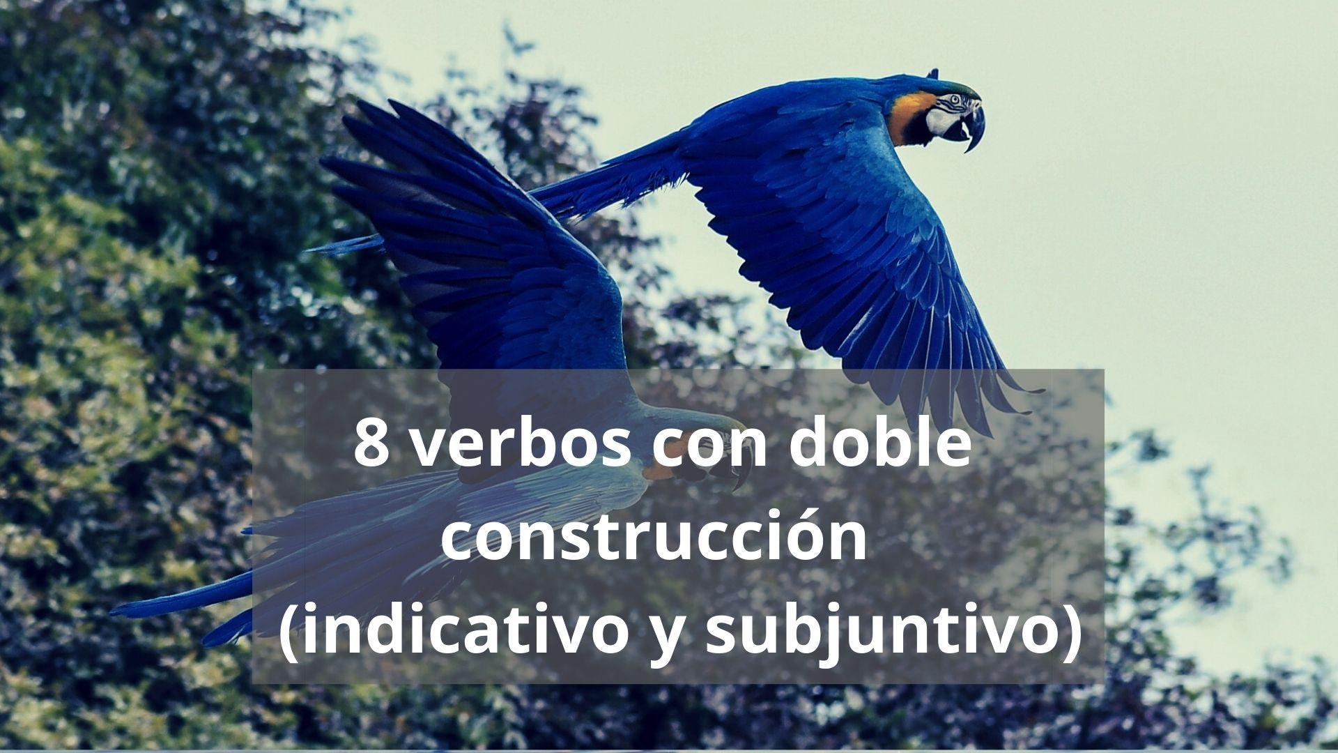 Indicativo vs. subjuntivo con verbos de doble construcción